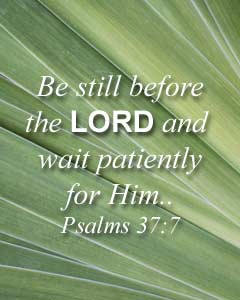 Be still before the Lord and wait patiently for Him... (Psalms 37:7)